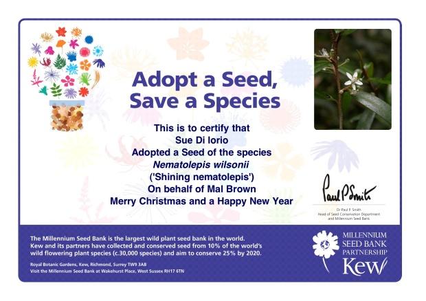 adopt-a-seed-Sue-Di-Iorio-2010