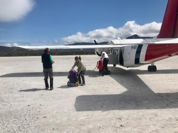 Plane at Mel
